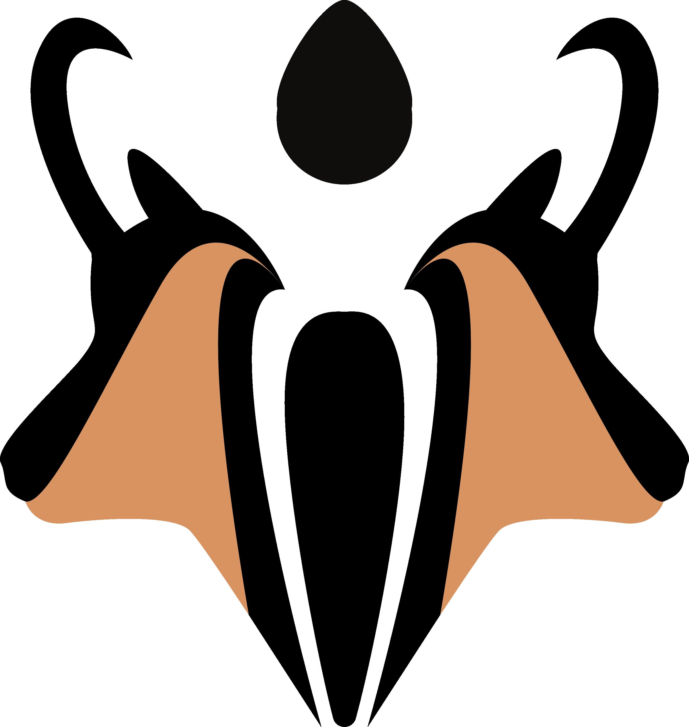 Les chamois de la combe en haut